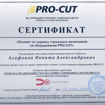 сертификат pro-cut старший мастер Агафонов